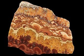 "5.9"" Polished Slab Of Rolling Hills Dolomite - Mexico For Sale, #96338"