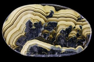 "2.6"" Polished Schalenblende Cabachon - Poland For Sale, #96764"