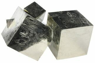 Pyrite - Fossils For Sale - #97893
