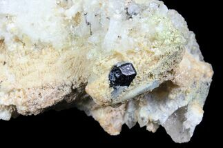 Beryl var. Aquamarine, Black Tourmaline (Schorl), Quartz & Feldspar - Fossils For Sale - #96585