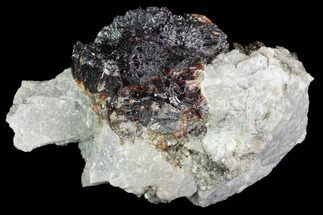 "Buy 2"" Sphalerite ""Flower"", Marcasite and Quartz Association - Missouri - #96355"