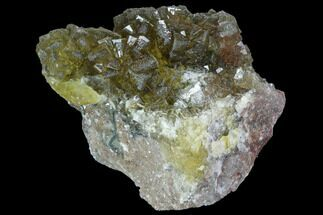 "2.9"" Yellow, Cubic Fluorite Crystal Cluster - Spain For Sale, #98690"