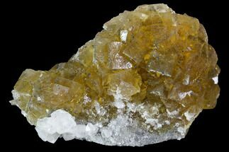 "3"" Yellow, Cubic Fluorite Crystal Cluster with Calcite - Spain For Sale, #98696"