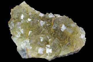 "3.3"" Yellow, Cubic Fluorite Crystal Cluster - Spain For Sale, #98702"