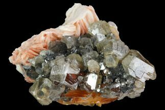 "Buy 2.1"" Cerussite Crystals with Bladed Barite on Galena - Morocco - #98725"