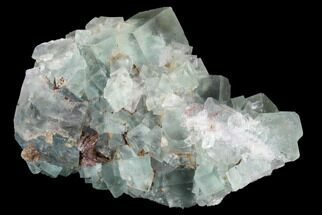 "Buy 3"" Blue-Green, Cubic Fluorite Crystal Cluster - Morocco - #98992"