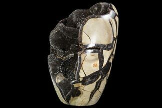 Septarian with barite - Fossils For Sale - #99450