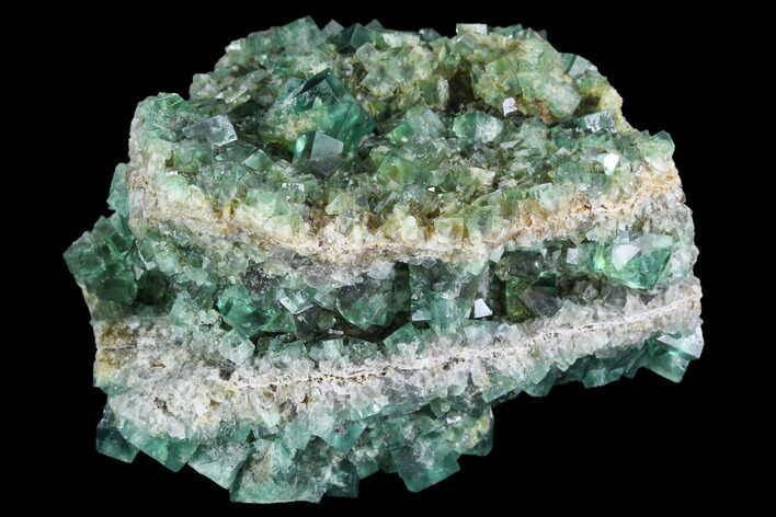 "3.5"" Fluorite Crystal Cluster - Rogerley Mine, UK"