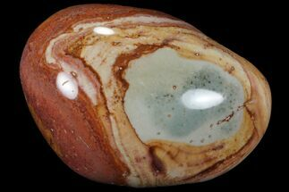 "2.8"" Polished Polychrome Jasper - Madagascar For Sale, #99611"