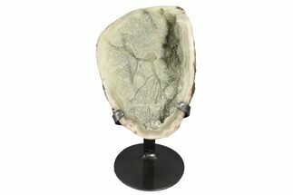 "Buy 7.5"" Druzy Green Quartz Cluster With Metal Stand - Uruguay - #99892"