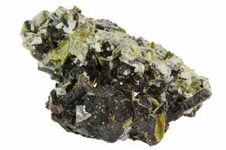 "Buy 2.9"" Garnet Cluster with Mica, Feldspar and Epidote- Pakistan - #100426"