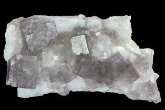 Fluorite & Quartz - Fossils For Sale - #100731