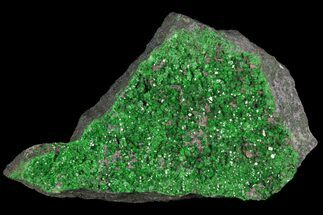 Uvarovite - Fossils For Sale - #100830
