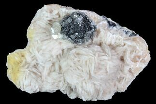 "Buy 2.4"" Cerussite Crystals with Bladed Barite on Galena - Morocco - #100774"