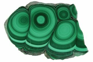 Malachite - Fossils For Sale - #101910