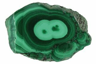 "1.1"" Polished Malachite Stalactite Slice - Congo For Sale, #101939"