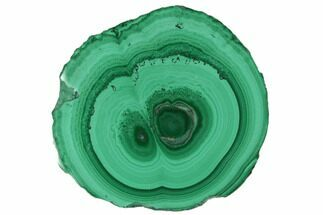 Malachite - Fossils For Sale - #101952