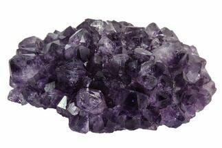 "2.1"" Amethyst ""Flower"" Crystal Cluster - Uruguay For Sale, #102221"