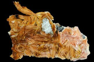 "Buy 3.9"" Pink and Orange Bladed Barite - Mibladen, Morocco - #103714"