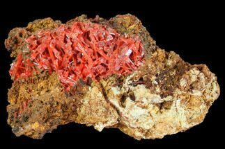 Crocoite - Fossils For Sale - #103815