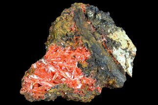 Crocoite - Fossils For Sale - #103797