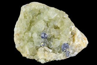 "4"" Yellow Cubic Fluorite Crystal Cluster with Galena - Morocco For Sale, #104606"