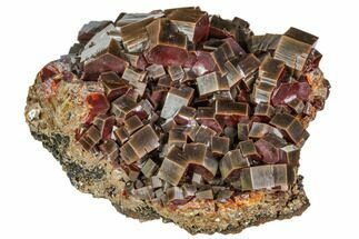 Vanadinite  - Fossils For Sale - #104757