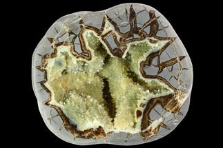 Septarian - Fossils For Sale - #104814