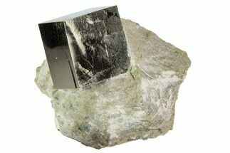 ".85"" Pyrite Cube In Matrix - Navajun, Spain For Sale, #105407"