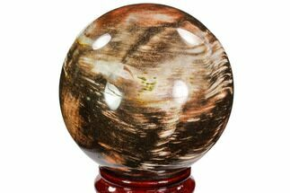 "3.6"" Colorful Petrified Wood Sphere - Madagascar For Sale, #106988"