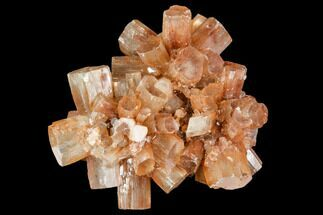 Aragonite - Fossils For Sale - #106608
