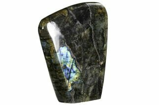 "Buy 4.6"" Flashy Polished Labradorite Free Form - Madagascar - #106900"