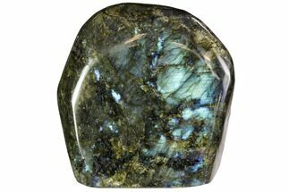 "Buy 4.6"" Flashy Polished Labradorite Free Form - Madagascar - #106906"