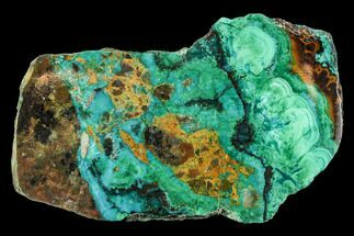 "Buy 2.7"" Polished Chrysocolla & Plume Malachite - Bagdad Mine, Arizona - #107410"