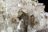 "11.7"" Clear Quartz Crystal Cluster - Brazil - #80936-5"
