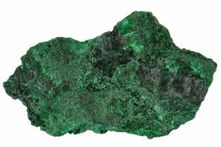 "3.6"" Silky Fibrous Malachite Cluster - Congo For Sale, #110492"