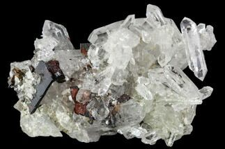 "Buy 1.9"" Brookite and Quartz Crystal Association- Pakistan - #111340"