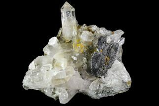 Quartz & Anatase - Fossils For Sale - #111459