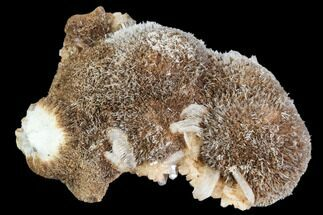 Thomsonite, Heulandite & Stilbite - Fossils For Sale - #112293