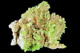 "Buy 1.6"" Vibrant Green Pyromorphite Crystal Cluster - China - #112210"