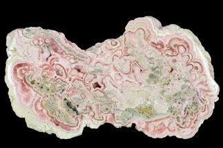 "4.6"" Rhodochrosite Stalactite Section - Argentina For Sale, #113402"
