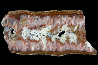 "8.7"" Bird Of Paradise Agate - Chihuahua Mexico For Sale, #114500"