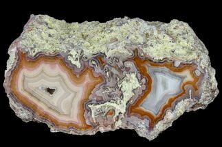 "4.8""  Cut & Polished, Banded Laguna Agate For Sale, #114968"