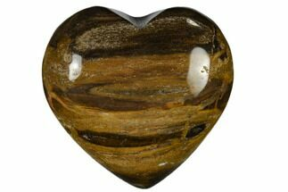 "Buy 1.6"" Polished, Triassic Petrified Wood Heart - Madagascar - #115507"