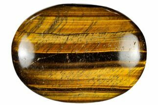 "Buy 2.9"" Polished Tiger's Eye Palm Stone - South Africa - #115555"