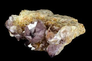 "3.1"" Wide, Amethyst Crystal Cluster - South Africa For Sale, #115382"