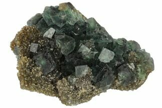 Fluorite & Quartz - Fossils For Sale - #114024