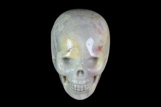 "Buy 2"" Realistic, Polished Fossil Coral Skull - #116575"