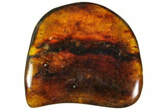 "Buy 1.7""  Polished Chiapas Amber (9 grams) - Mexico - #114769"
