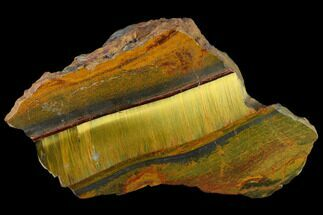 "5.8"" Marra Mamba Tigers Eye - Mt. Brockman (2.7 Billion Years) For Sale, #117194"